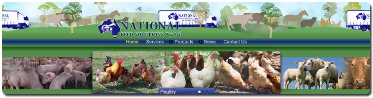 National Feed Solutions